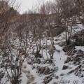 下马威——东灵山——北灵山——黄草梁——柏峪