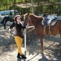 京西草原扎营骑马