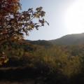 20121027百望山