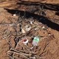 海坨的垃圾