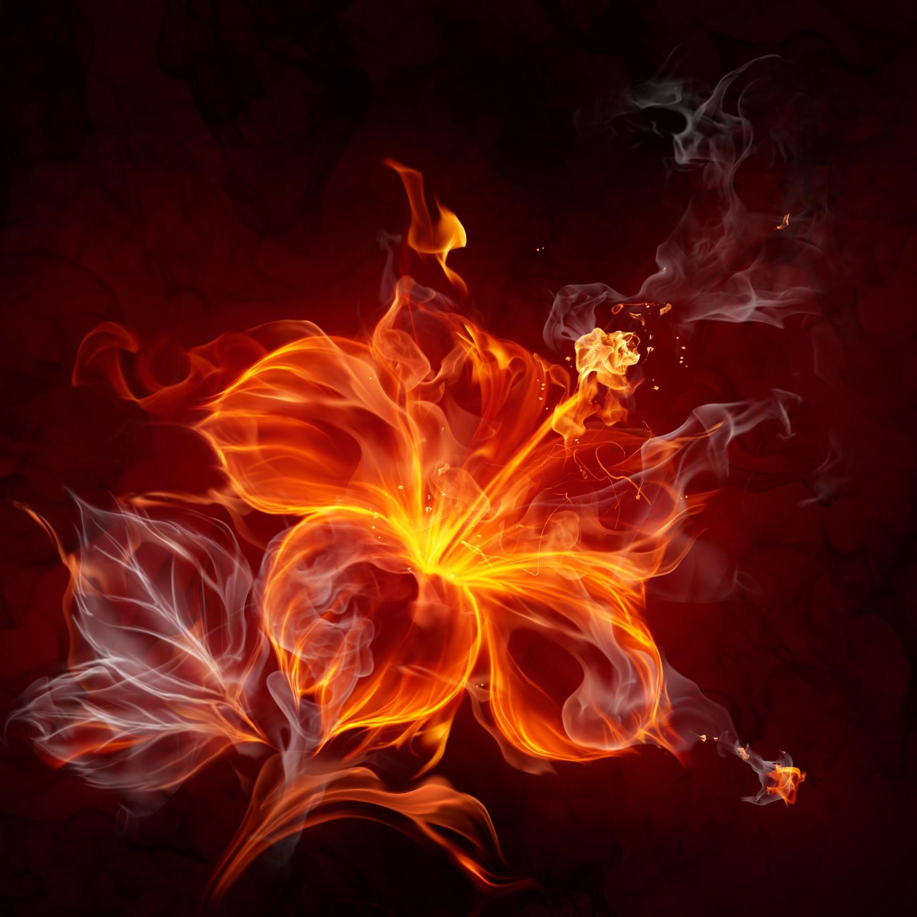 会声会影火焰动态素材