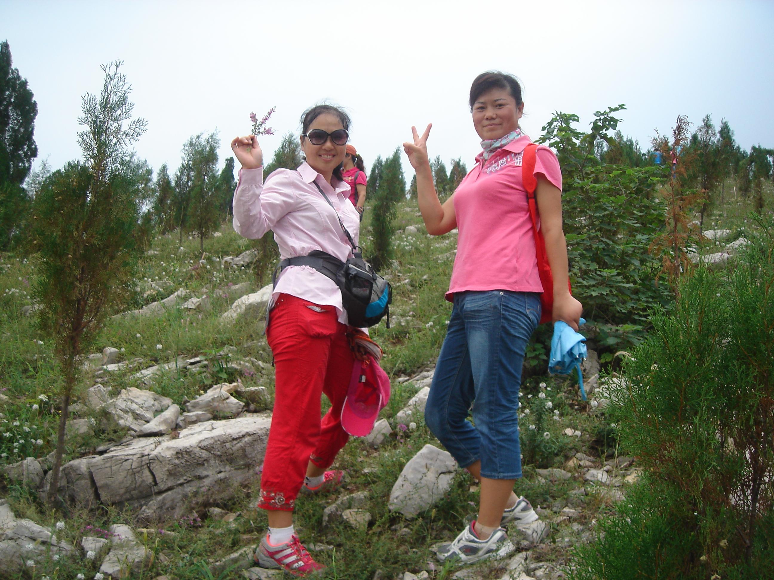 凤凰山的两张片片-算报道吧!-徐州-江苏-绿野户外网