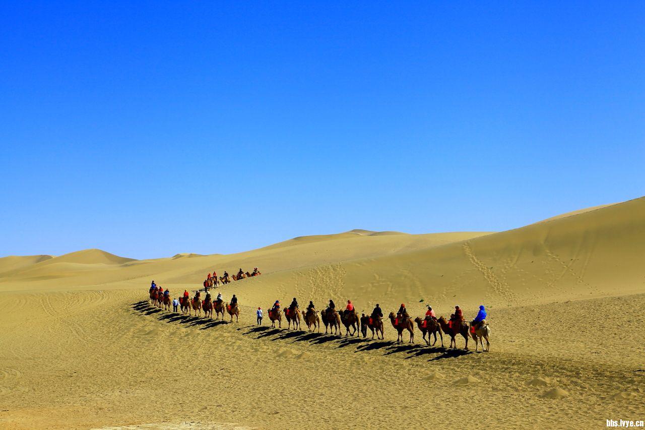 骑着骆驼进沙漠