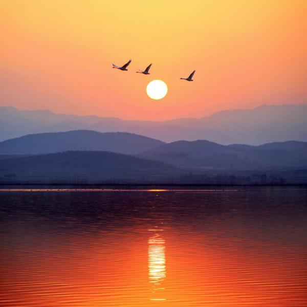 【山水户外】这个冬季我们一起去看海~烟墩角~天鹅湖~海草房~与天鹅