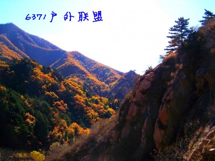 周日【小黄山】【云蒙山森林公园】赏出春京郊美景,登山溜腿一日活动