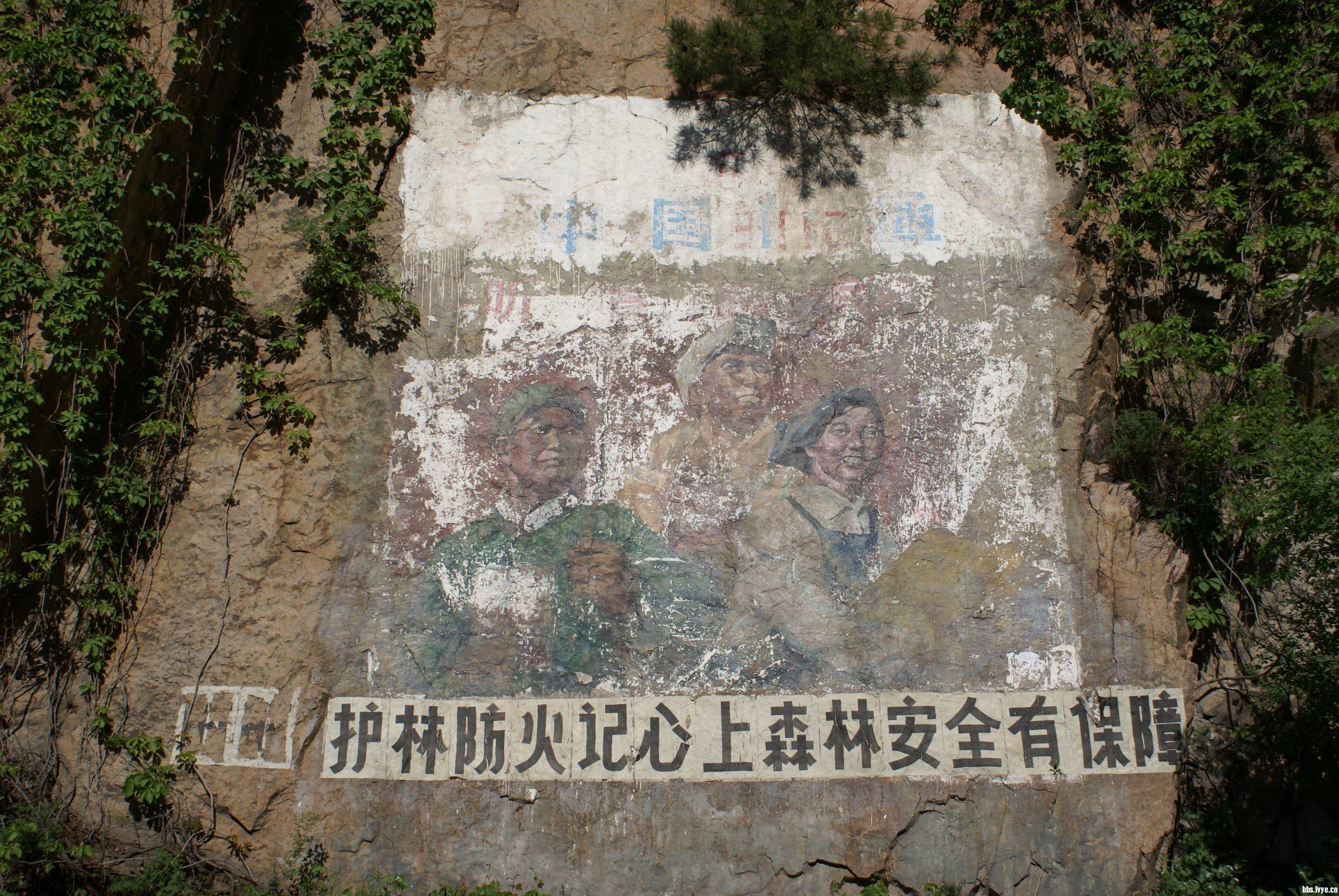 05.14. 北京松山森林公园的景色照片!