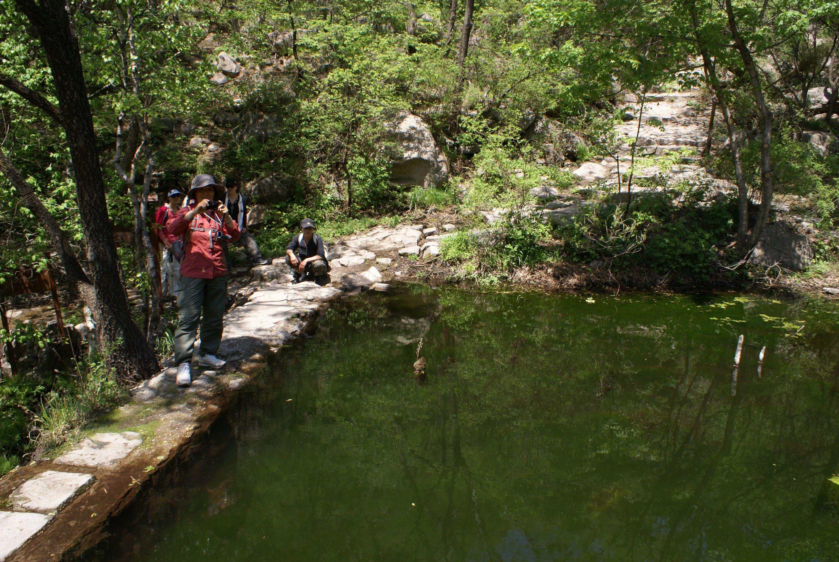 【北京森林生态旅游年票】图片