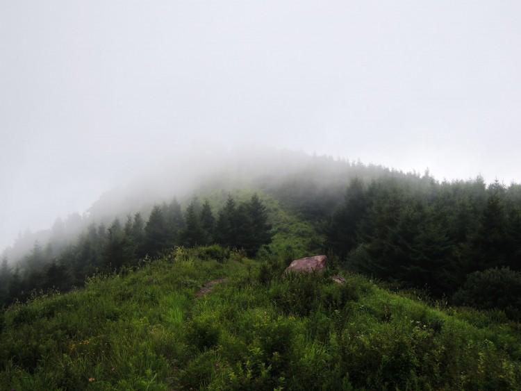 雾绕.jpg