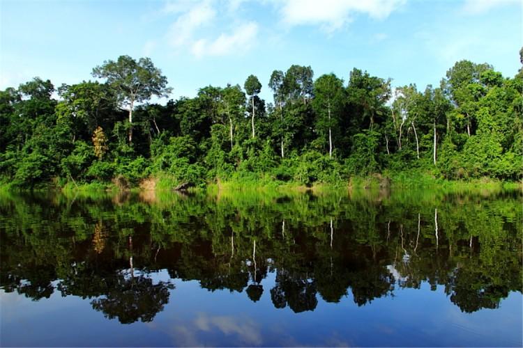 【守望地球】神奇的亞馬孫熱帶雨林~~美國國家地理列為一生中必去的50個地方之一 ... ...