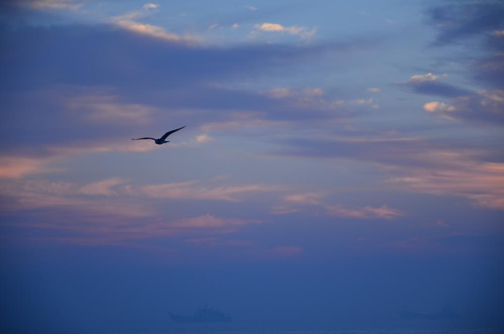 2013年9月19日-20日盘锦红海滩湿地 宁远海滨日出