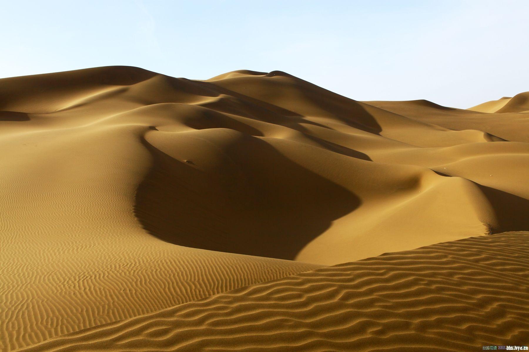 库木塔格沙漠完整穿越(报名慎重)