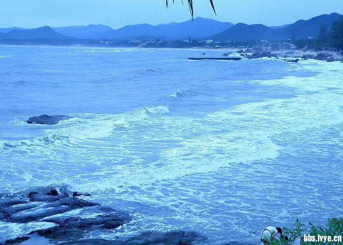 这个五一假期让我们向大海粗发!图片