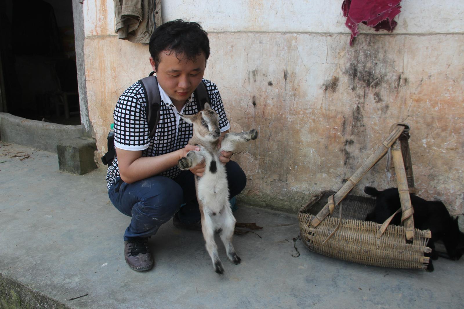 我们琅里同志,忍不住拥抱可爱的小羊羔