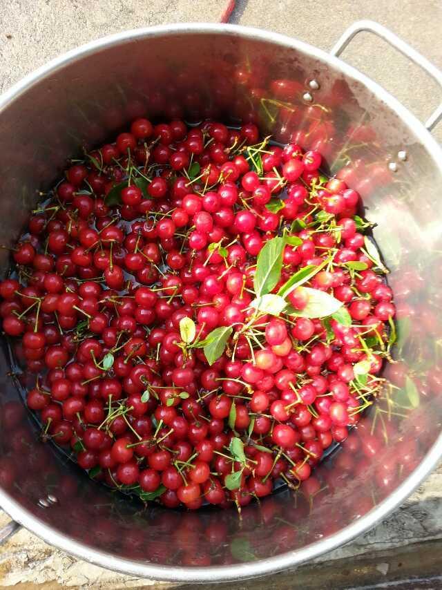 奥比岛什锦水果蜜酿