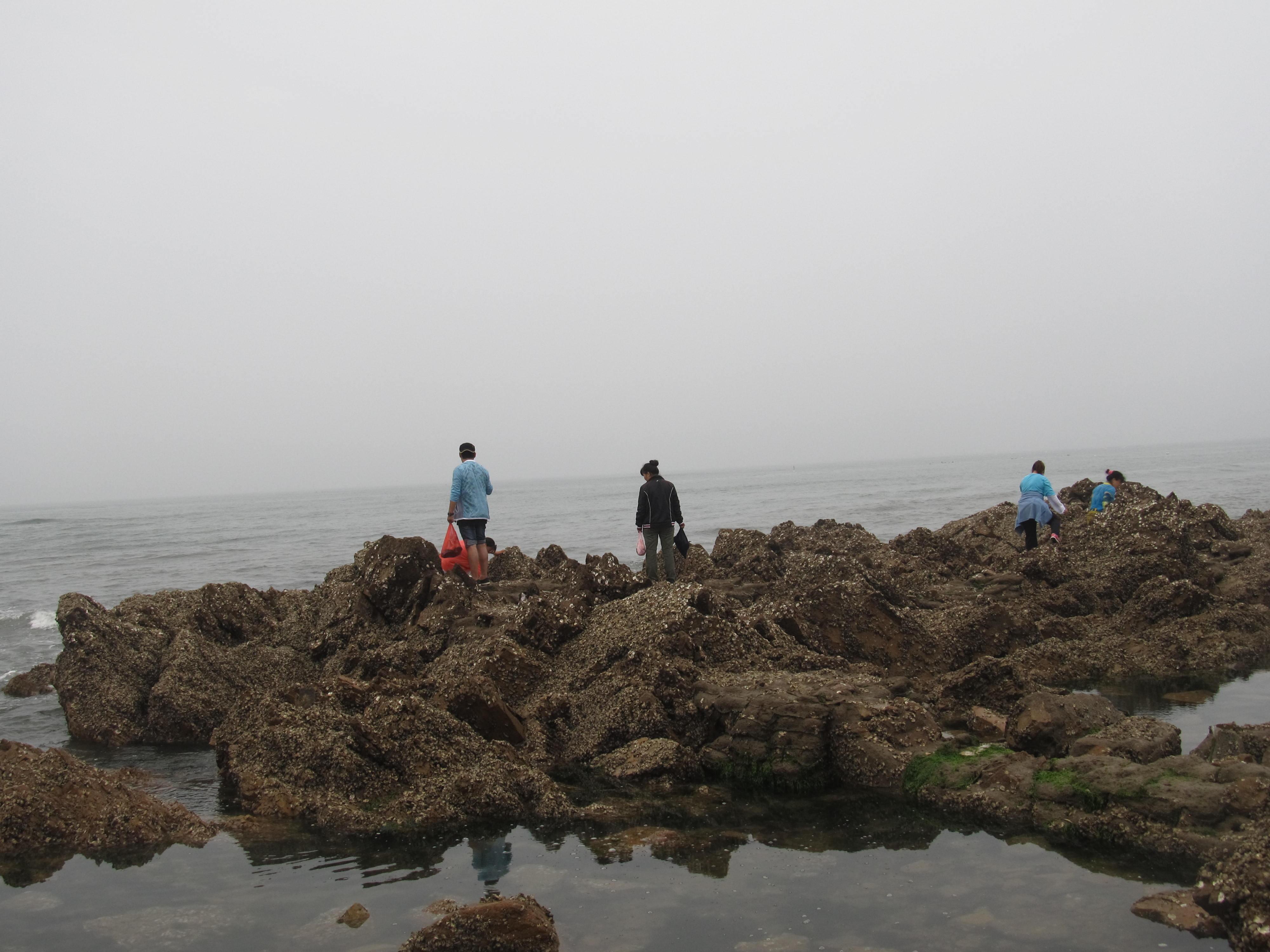 闲游竹岔岛,金沙滩
