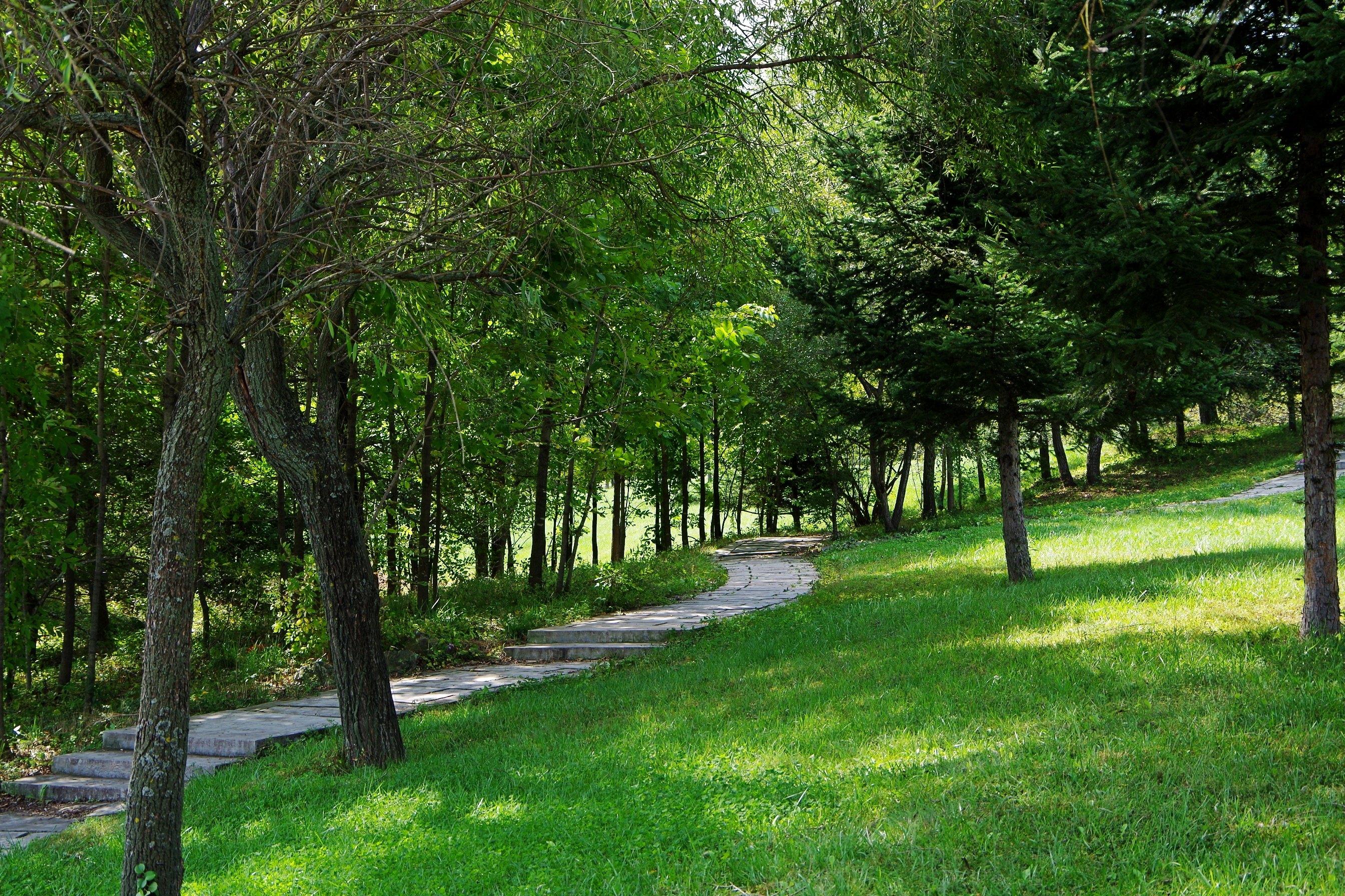 蜿蜒的林间小路,嬉戏花中的美丽蝴蝶,抛开都市的喧闹,好好享受