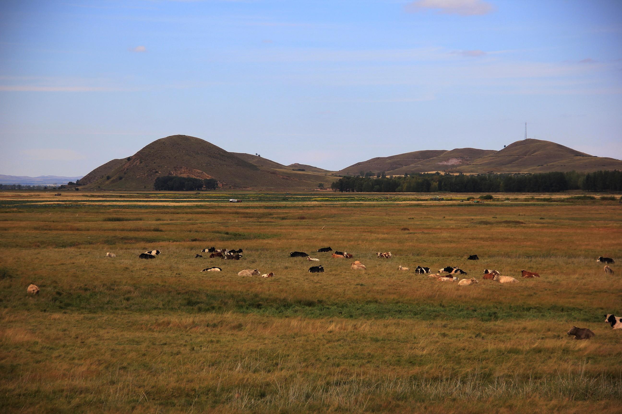坝上草原牧场乐园
