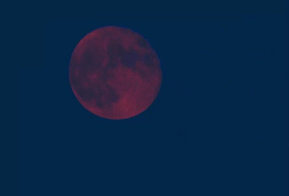 楼顶夜晚的月亮,窗前清晨的枫叶