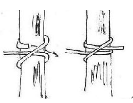 卷结.该结常用于栓马时使用.也可用于捆绑木材.
