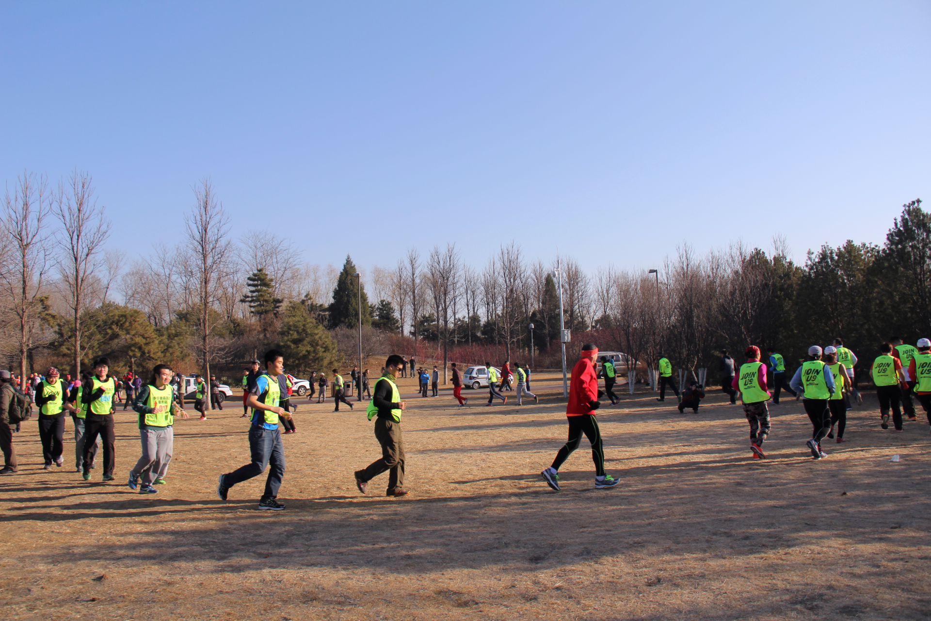 """北京奥森公园喜迎羊年""""光猪跑""""图片"""