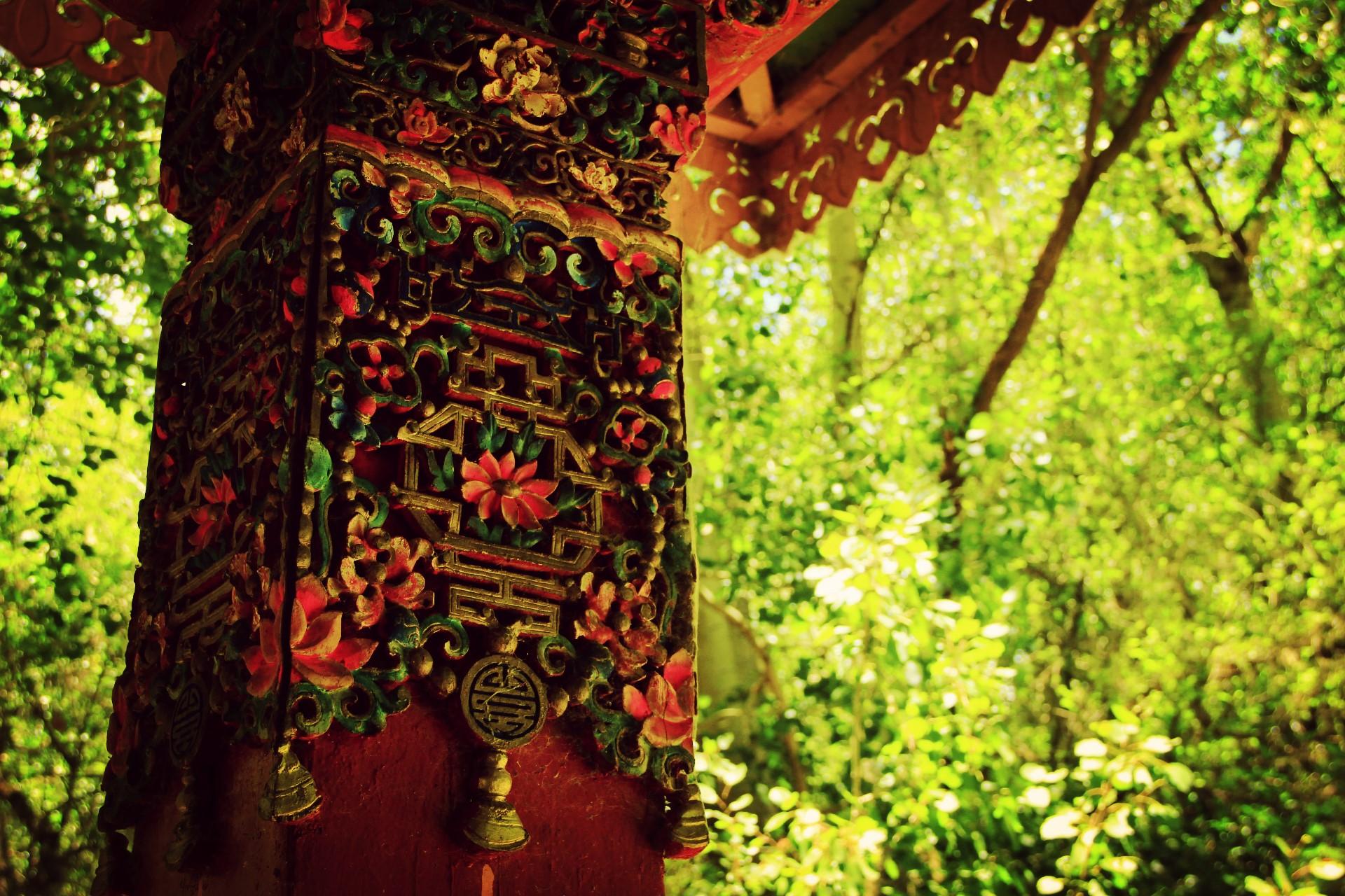 壁纸 风景 森林 桌面 1920_1280