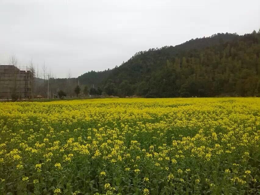 江西上饶之醉美灵山风景区