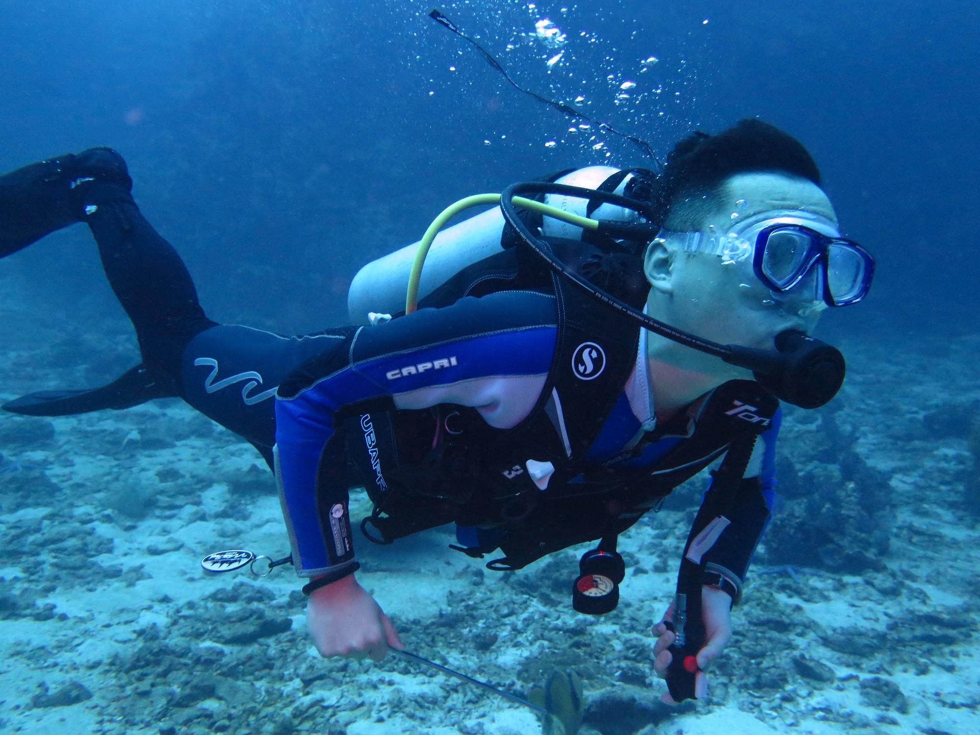 壁纸 海底 海底世界 海洋馆 水族馆 桌面 2000_1500