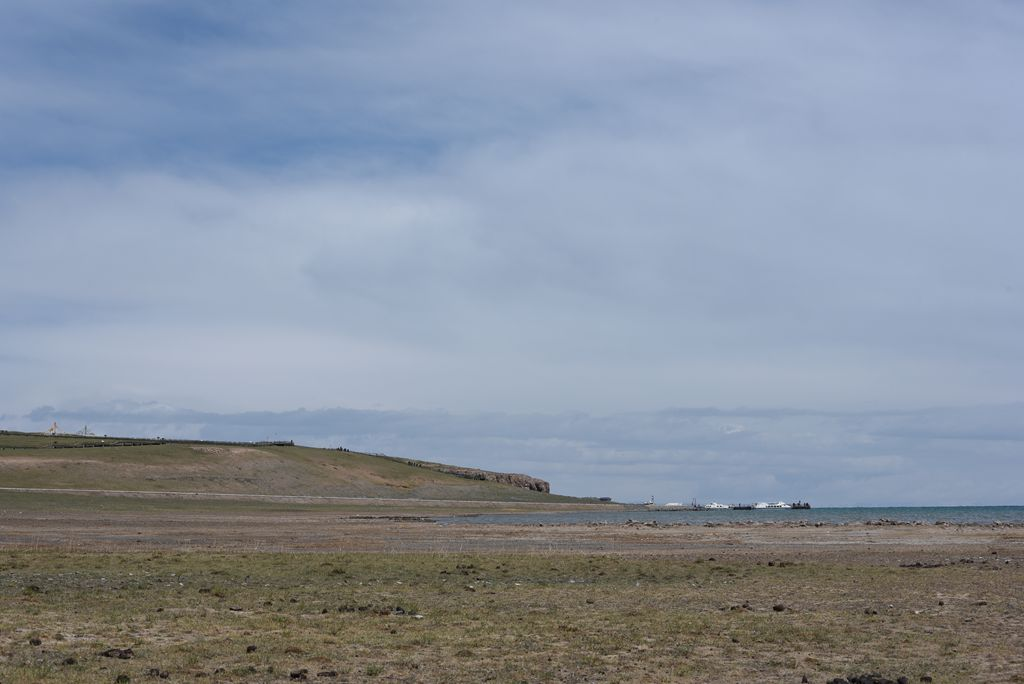 鸟岛 466.jpg