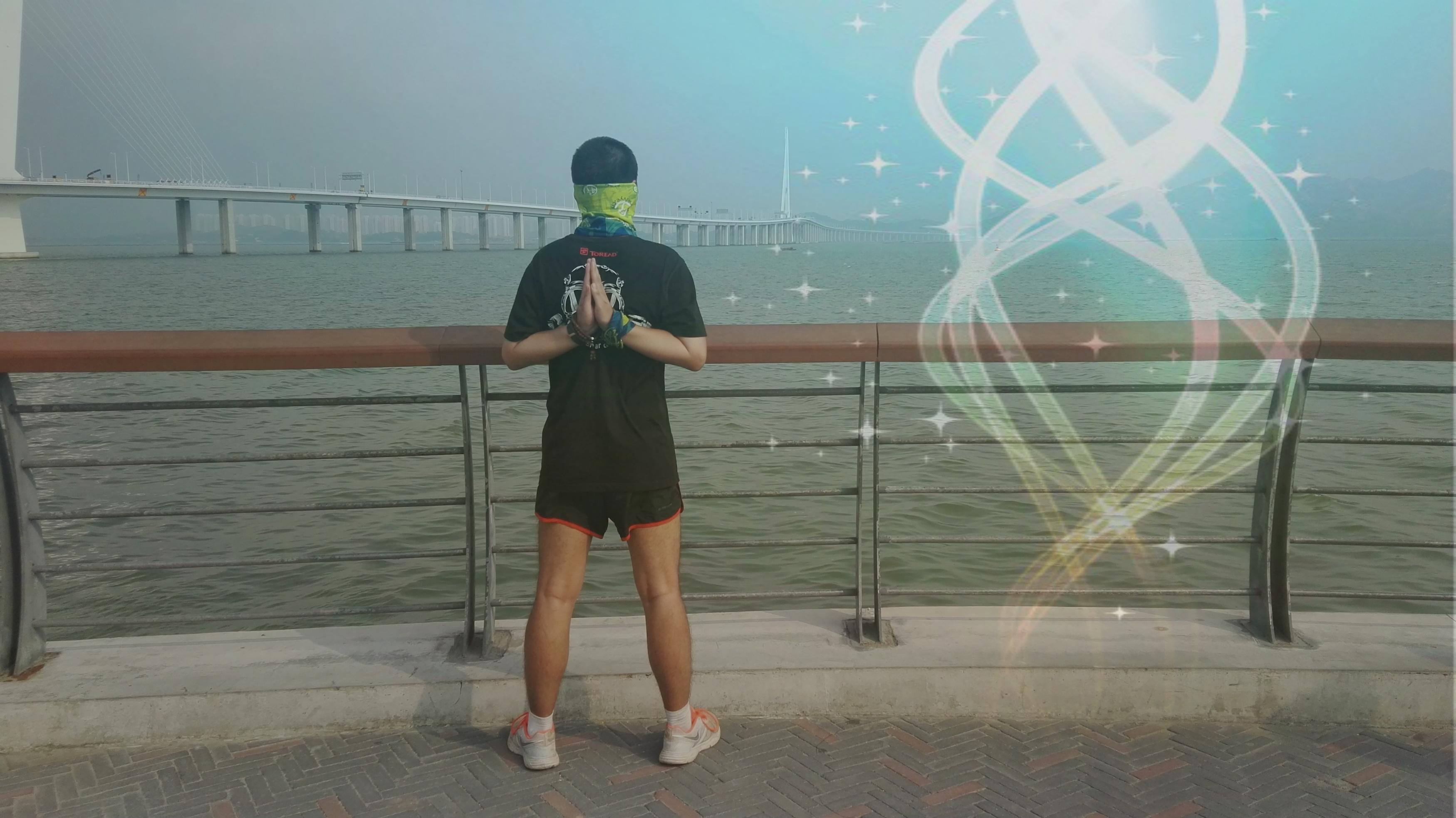 深圳湾公路大桥