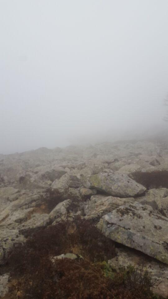 早上醒来的雾气.jpg