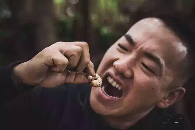 吃虫子.jpg