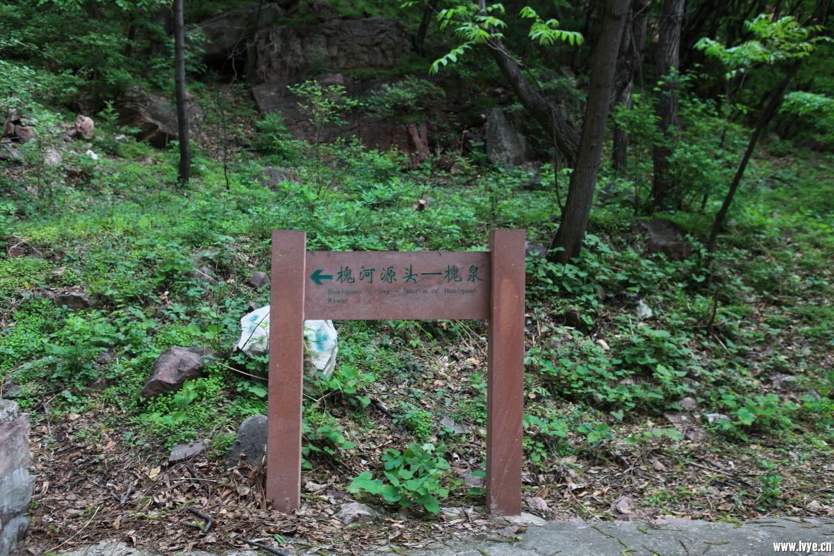 井陉行781.JPG