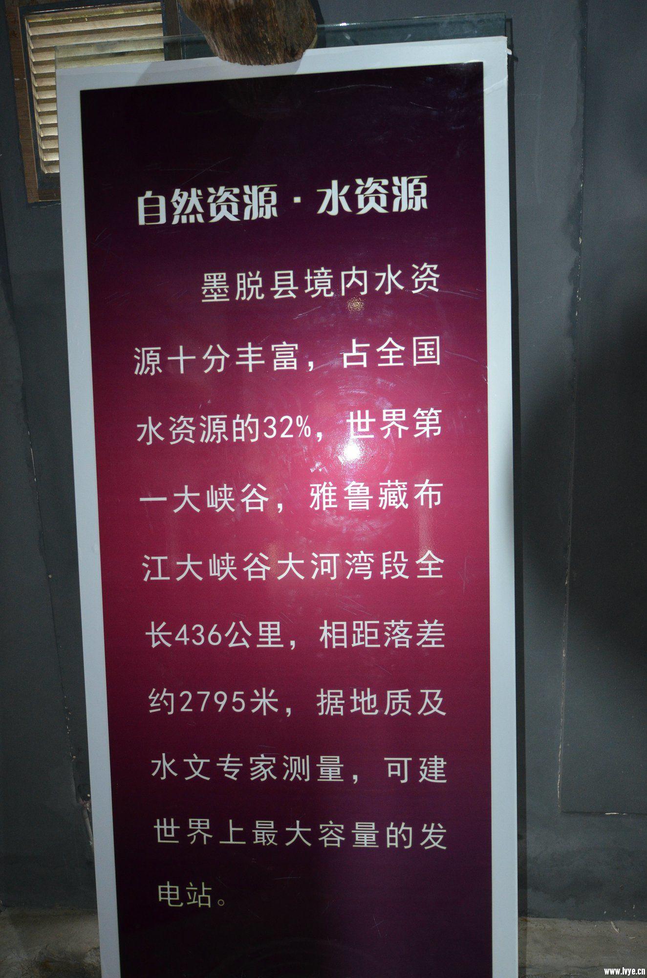 DSC_2984.JPG