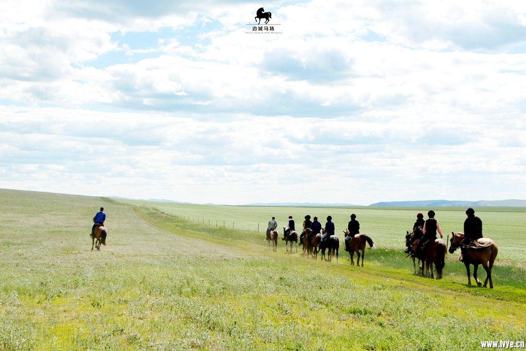 horsebackno501.jpg
