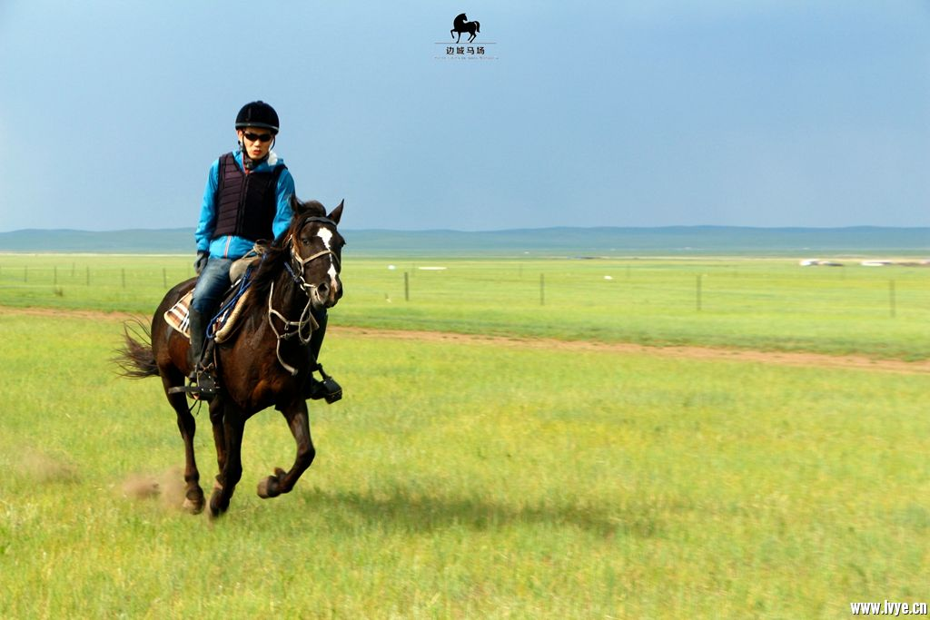horsebackno514.jpg