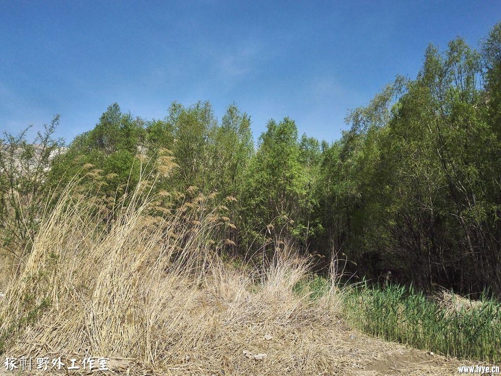 028野营周边环境 (5).jpg