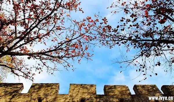 地址:北京市怀柔区渤海镇慕田峪长城风景区