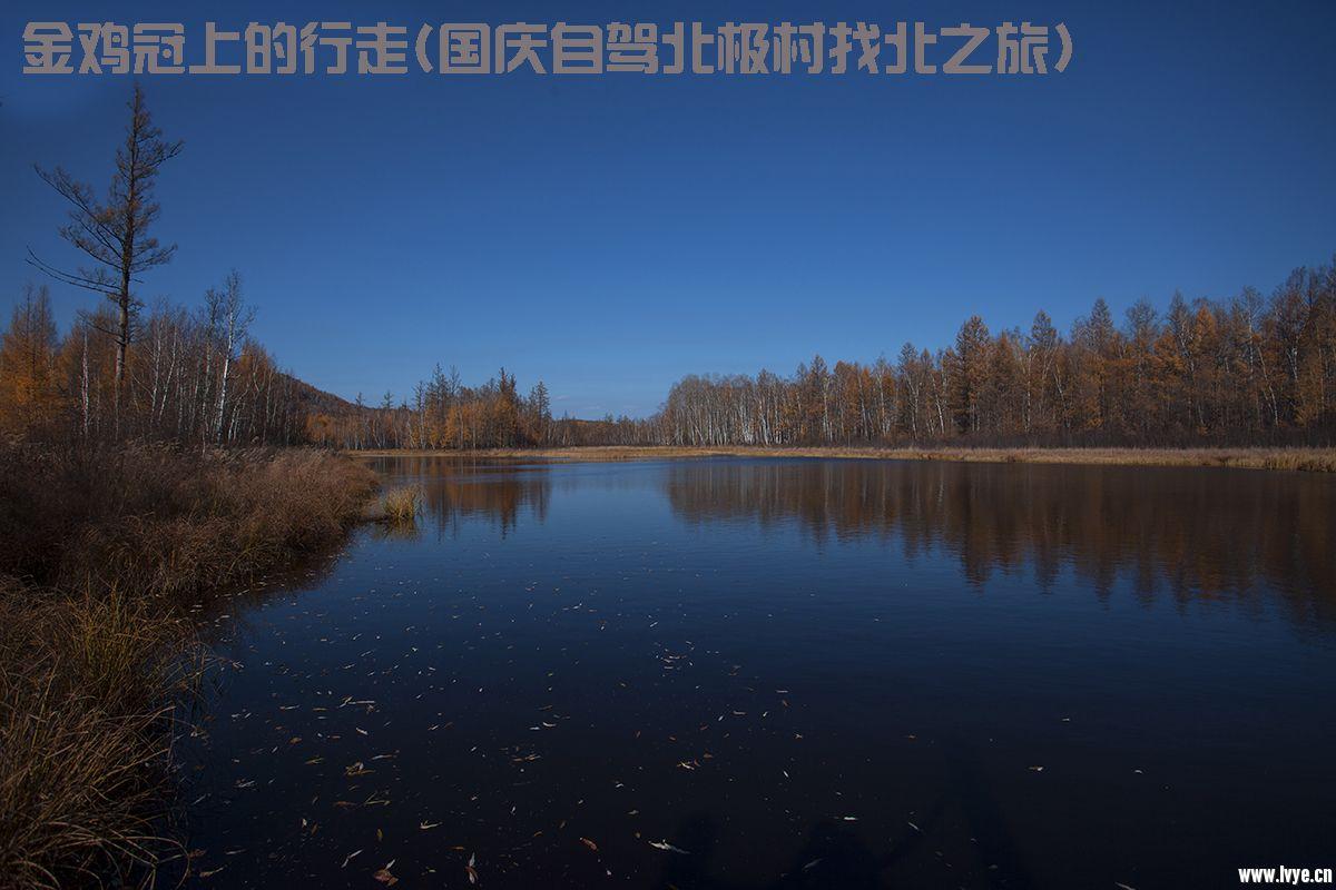 IMG_0192.jpg