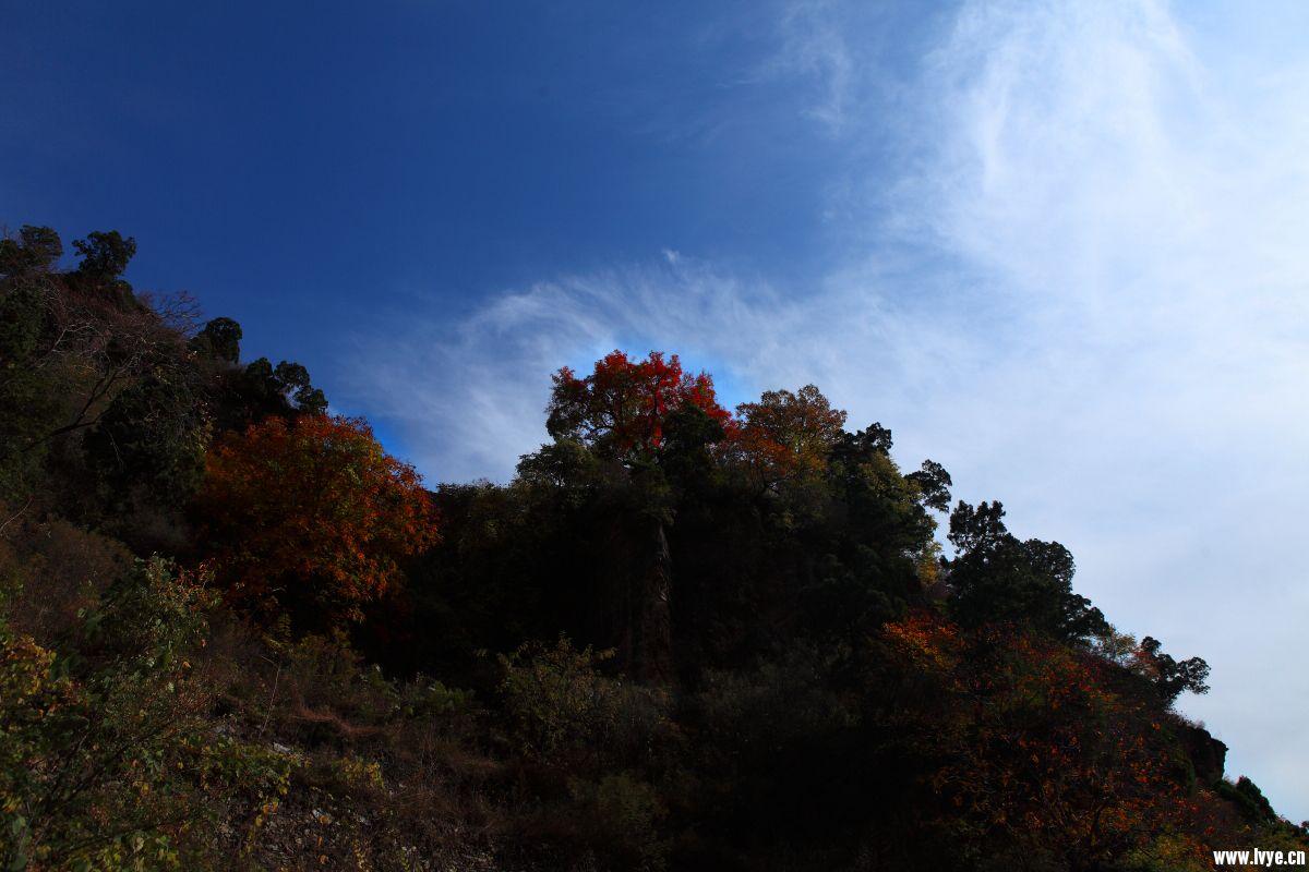 红井路159.JPG