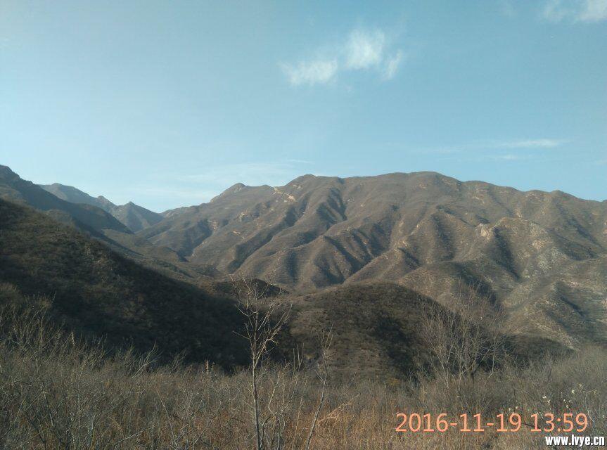 QQ图片20161121093849.jpg
