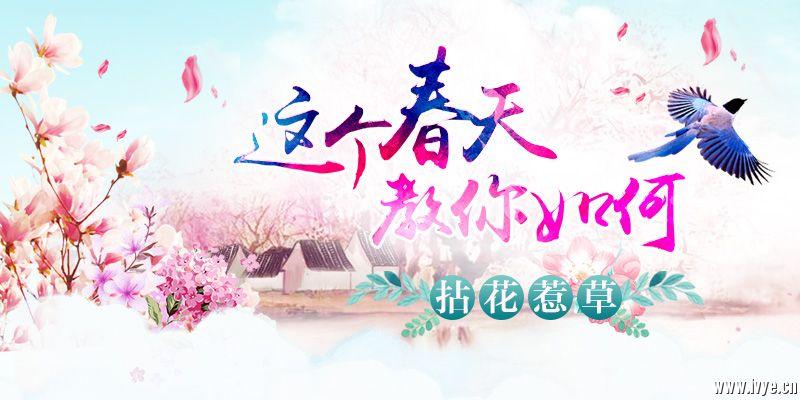 赏花专题banner_800-400.jpg