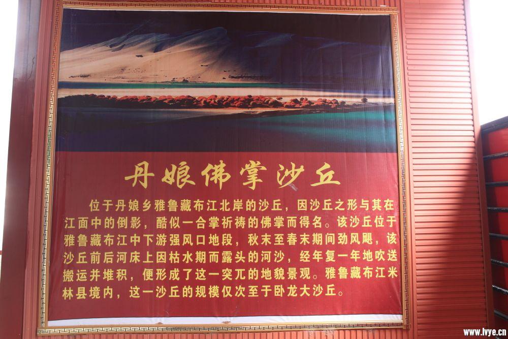 尼洋河06.JPG