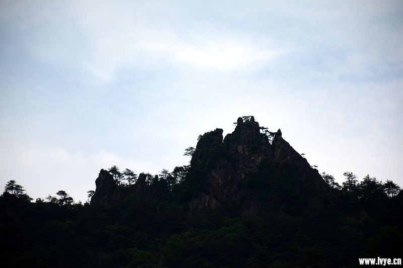 DSC_8971_副本.jpg
