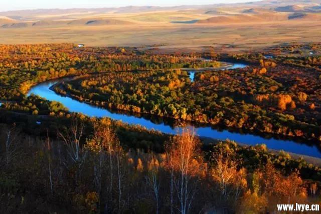 根河湿地2.jpg