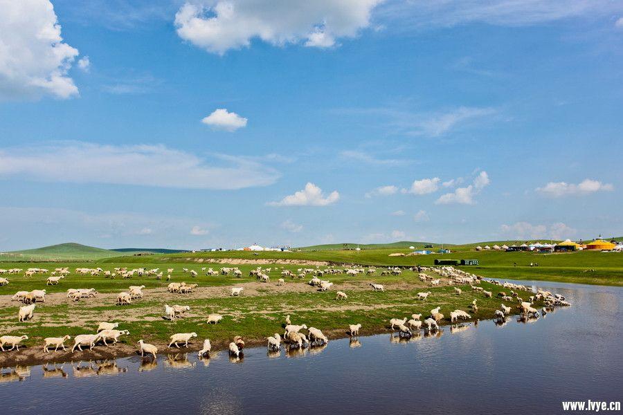 莫日格勒河.jpg