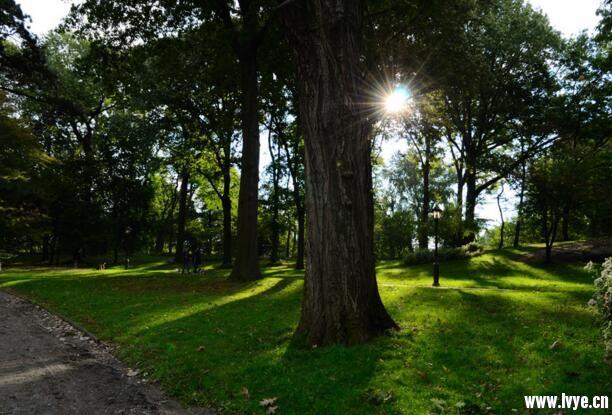 美国纽约中央公园2.jpg