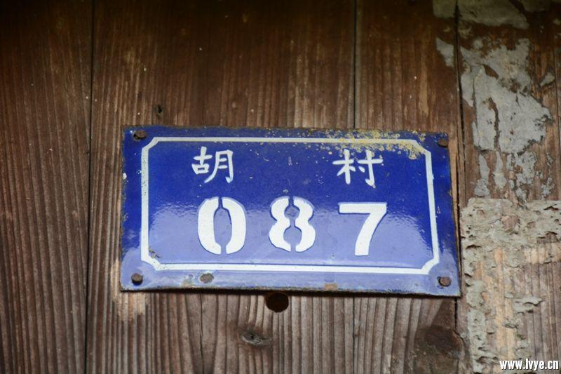 DSC_4347_副本.jpg