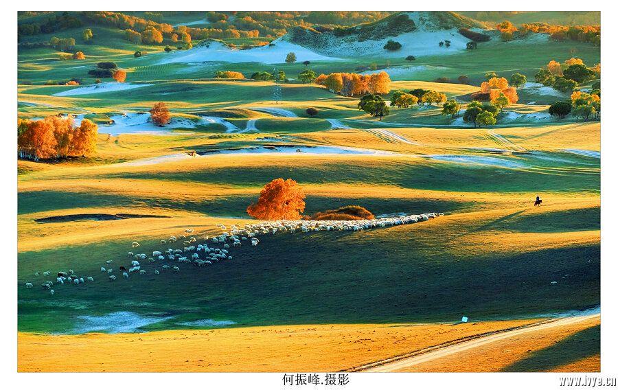 牧羊图11.jpg