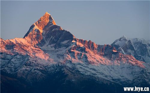 machhapuchhre-mountain-1280x800.jpg
