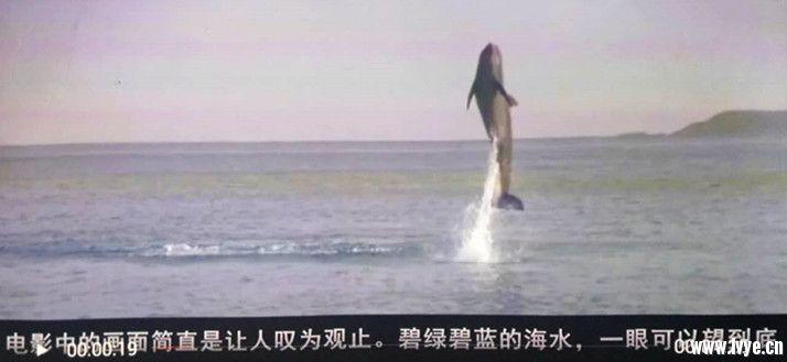 微信图片_20180110170748_副本.jpg